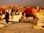 Egiptas, nuotr. iš asm. archyvo