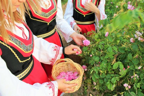 """""""Parodomoji"""" nuotrauka su bulgarų tautiniu kostiumu. Skinant rožes geriausia vilkėti kuo paprastesniais drabužiais, asm. archyvo nuotr."""